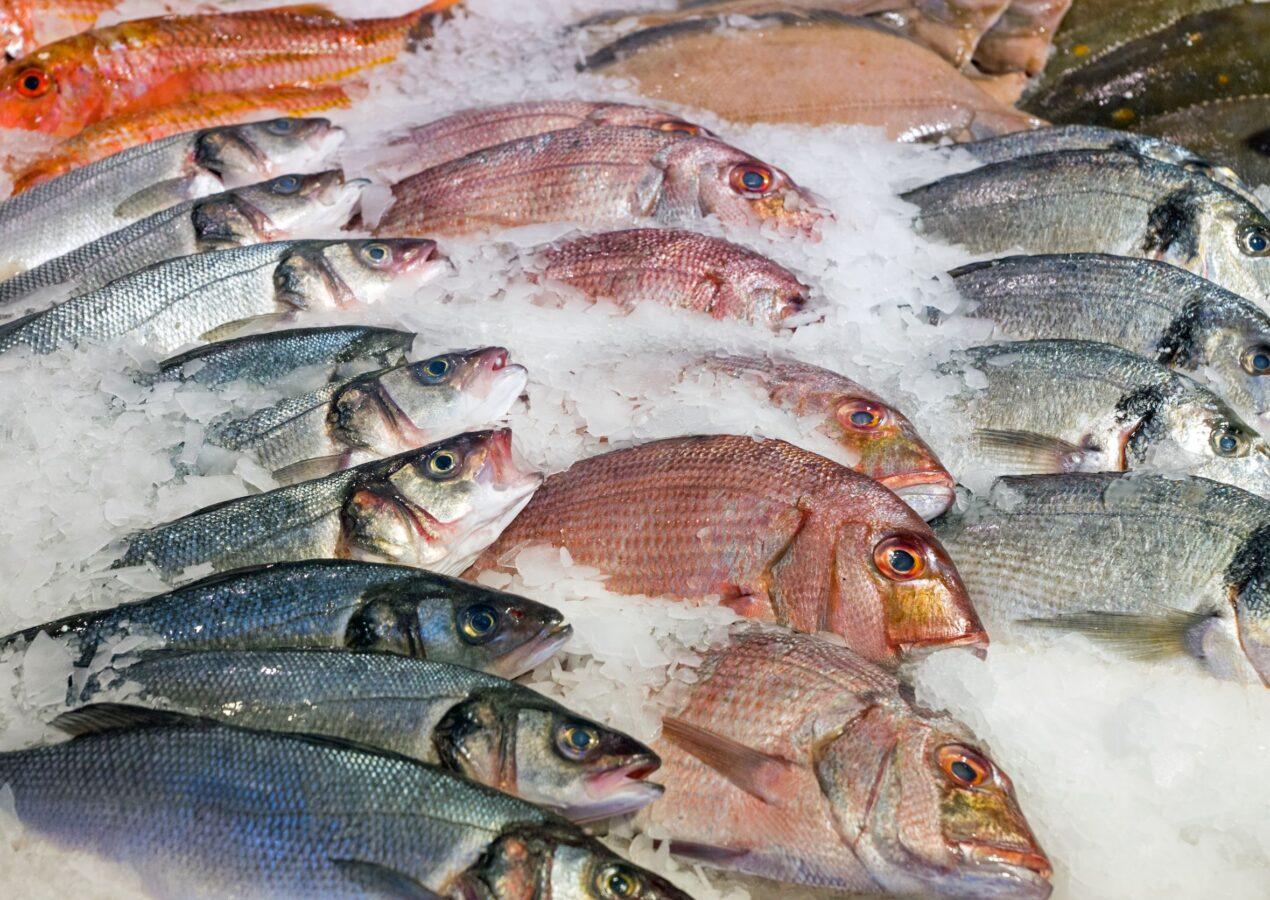Fresco, pulito e gustoso pesce a domicilio